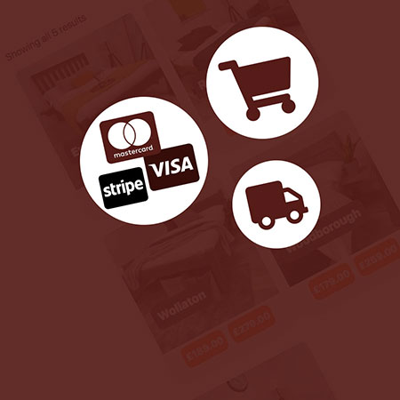 Ecommerce Package Web design